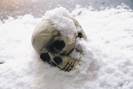 損切り出来てますか?気にしません凍死家ですから!